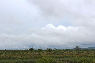 KrugerSAT11