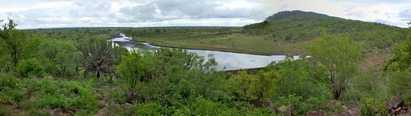 KrugerSAT25